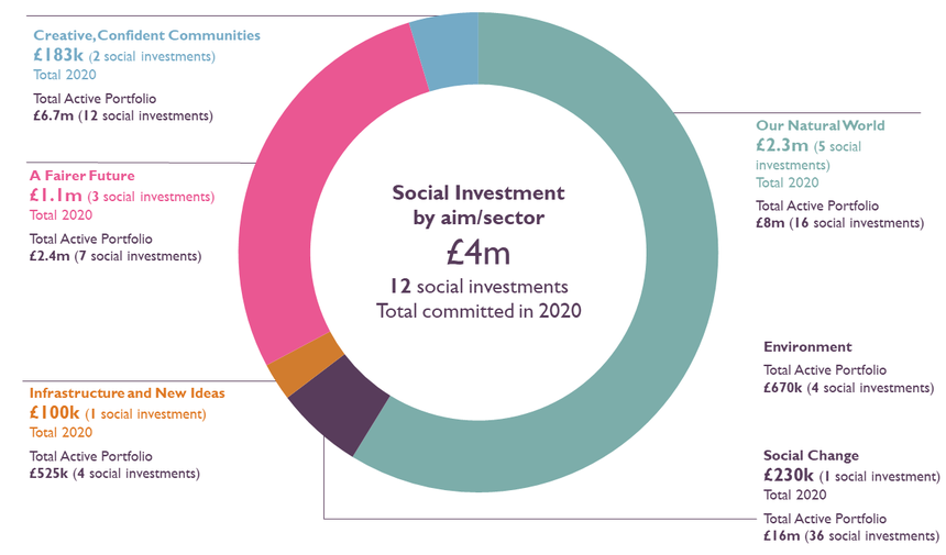 Social Investment portfolio in 2020 by aim